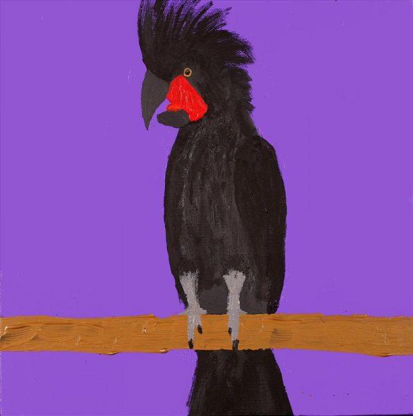 Jurlpa Kuja Kalu Nyinami Yurntumu-Wana (Birds that live around Yuendemu)