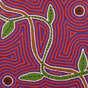 Ngalyipi Jukurrpa (Snake Vine Dreaming)