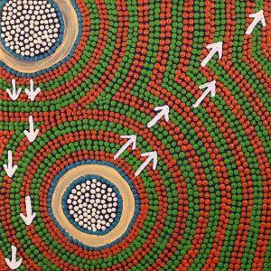 Yankirri Jukurrpa (Emu Dreaming) - Ngarlikurlangu