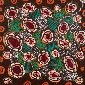 patterns of the Landscape around Yuendumu