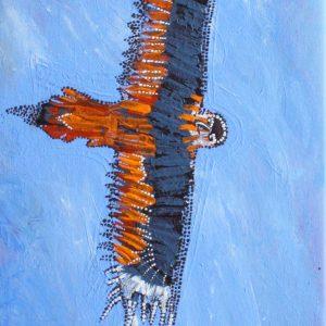 wedge tailed eagle dreaming wakurlpa & kilyarlpa