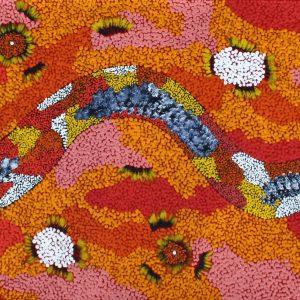 Wanampi Tjukurpa - Snake Dreaming