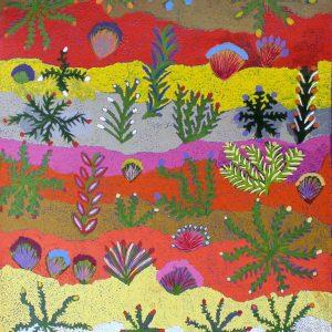 Bush Medicine Plants