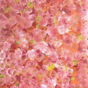 Anwekety (Conkerberry)