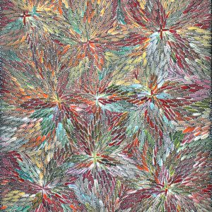 Bush Medicine Leaves