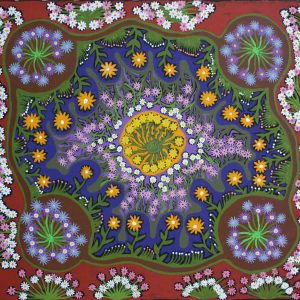 Tjulpun tjulpunpa – Desert wildflowers