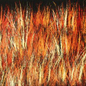 Bushfire Dreaming